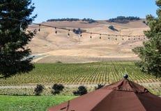 Établissement vinicole de Napa Valley images libres de droits