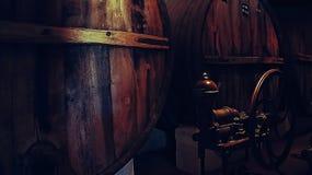 Établissement vinicole de Salta - Argentine Images libres de droits