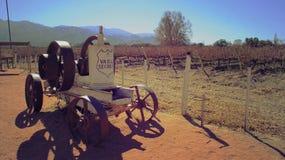 Établissement vinicole de Salta - Argentine vieille machine de raisin Photo libre de droits