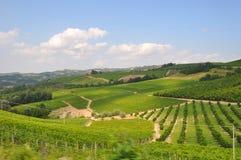 Établissement vinicole et cordons Barolo alba Images libres de droits