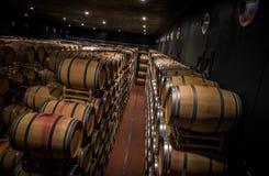 Établissements vinicoles de Tasso d'Al de Guado dans Bolgheri, Livourne, Italie Photographie stock