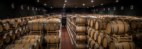Établissements vinicoles de Tasso d'Al de Guado dans Bolgheri, Livourne, Italie Photo libre de droits