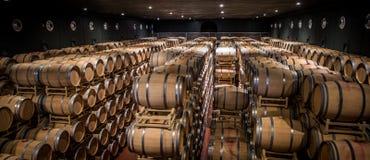 Établissements vinicoles de Tasso d'Al de Guado dans Bolgheri, Livourne, Italie Photographie stock libre de droits