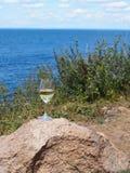 Établissements vinicoles et vignobles du Long Island Photo libre de droits