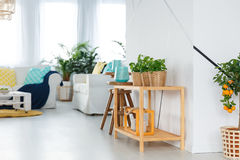 Étagère en appartement image libre de droits