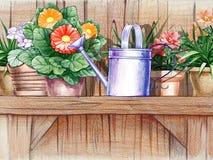 Étagère en bois avec des pots de fleur Photographie stock