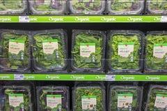 Étagère organique de produit dans les économies sur l'épicerie de nourritures Photographie stock libre de droits