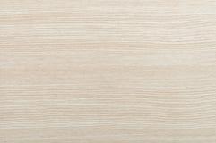 Étage en bois de hêtre Image stock