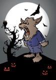 Étaient le cri perçant de loup Image libre de droits