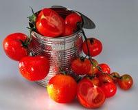 Étain avec des tomates Photographie stock libre de droits