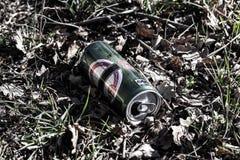 Étain de bière sur l'herbe Photo libre de droits