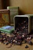 Étain sec de thé Photos stock