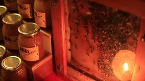 Étalage avec du miel et abeilles qui convertissent le nectar en miel sur un marché médiéval banque de vidéos