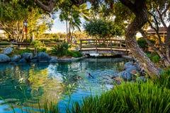 Étang au village de port maritime, à San Diego, la Californie Image libre de droits