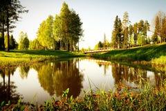 Étang avec des arbres réfléchissant là-dessus Photo stock