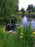 Étang avec la roue d'eau Photographie stock