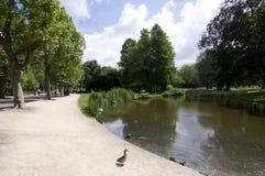 Étang avec le stationnement Amsterdam de vondel de canards Photographie stock libre de droits
