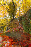 Étang d'automne Photographie stock