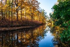 Étang d'automne en parc Photographie stock