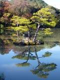 Étang d'Autumn Reflection de Japonais Photographie stock libre de droits