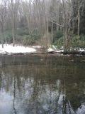 Étang d'hiver Photographie stock libre de droits
