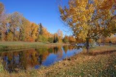 Étang dans l'automne Photos libres de droits