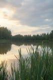 Étang dans la campagne en automne image stock