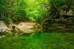 Étang dans la forêt Photos stock
