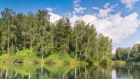Étang dans la forêt d'été sous des nuages banque de vidéos