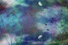 Étang dans la lumière de lune Image stock