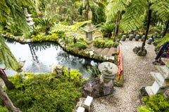 Étang dans un beau jardin chez Monte au-dessus de Funchal Madère Photos libres de droits
