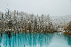 Étang de bleu de Biei Photographie stock