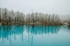 Étang de bleu de Biei Images stock