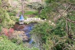 Étang de canard aux jardins de Wellington Botanical images libres de droits