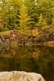 Étang de carrière en automne Photographie stock libre de droits