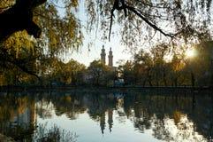 Étang de cygne en parc d'automne Images libres de droits