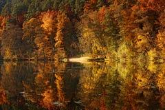 Étang de forêt en automne Photographie stock