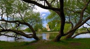 Étang de Holguin dans Peterhof, juin 2015 image stock