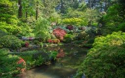 étang de Japonais de jardin Photographie stock libre de droits