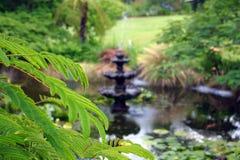 Étang de jardin Photographie stock libre de droits