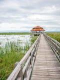 Étang de Lotus avec le pont en bois Image stock