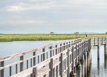 Étang de Lotus avec le pont en bois Images libres de droits