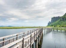 Étang de Lotus avec le pont en bois Photographie stock libre de droits
