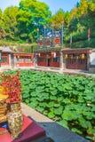 Étang de Lotus dans le palais d'été, Pékin, Chine images stock