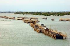 Étang de pêche d'aquiculture dans le fleuve d'entrée. images libres de droits