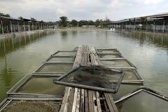 Étang de pêche d'aquiculture de l'Asie image stock