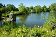 Heure pour une certaine pêche dans le vieil étang Images libres de droits