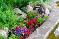 Étang de pierres de fleurs Photos stock
