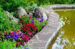 Étang de pierres de fleurs Images libres de droits
