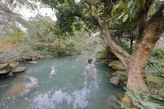Étang de temple de wuhou, adobe RVB image libre de droits